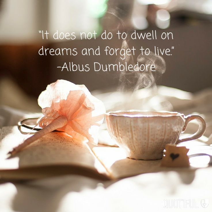 """""""It does not do to dwell on dreams and forget to live."""" - Albus Dumbledore"""