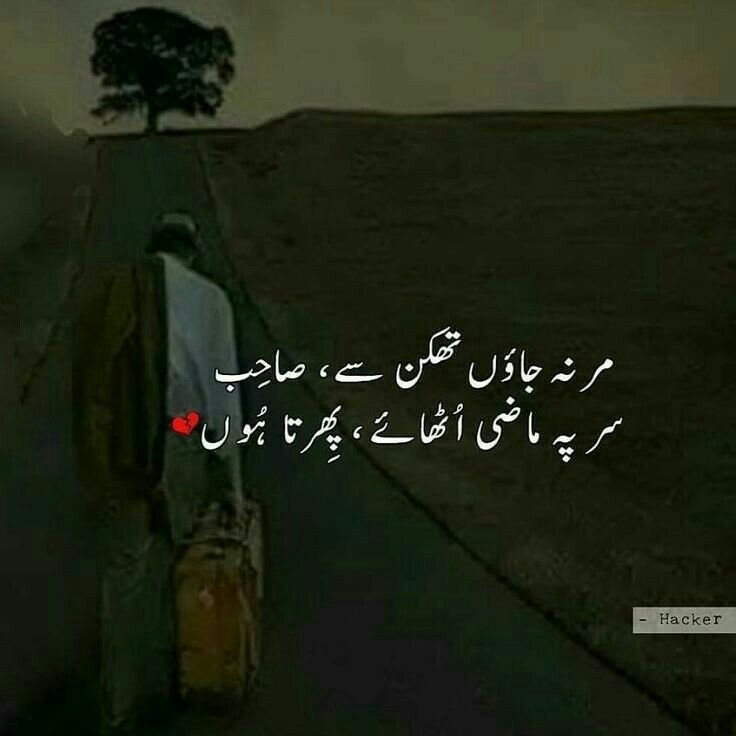 11 Best Ume Collection Images On Pinterest Urdu Poetry Poetry