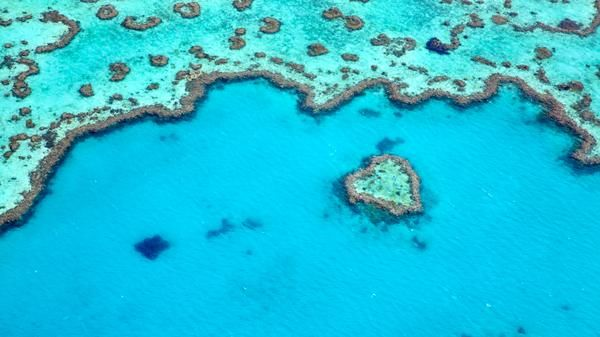 The must-sees of Queensland: Heart Reef #whitsundays