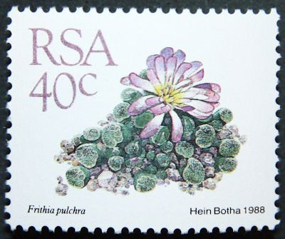 SOUTH AFRICA 1988 cacti part set http://www.stampsoftheworld.co.uk/wiki/South_Africa_1988_Definitive_Succulents