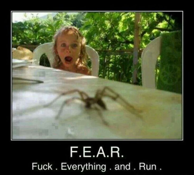 The correct definition of fear