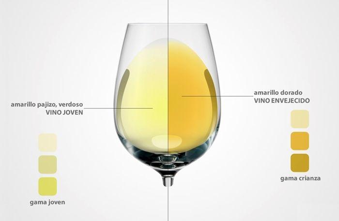 ¿Qué significado tiene el color del vino blanco? https://www.vinetur.com/2014090216610/que-significado-tiene-el-color-del-vino-blanco.html