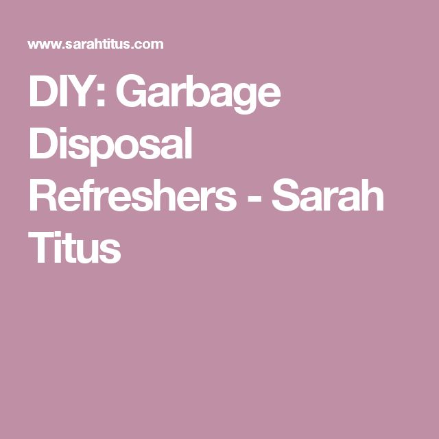 DIY: Garbage Disposal Refreshers - Sarah Titus