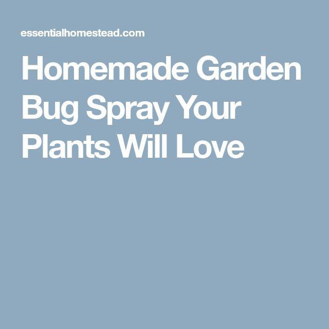 Homemade Garden Bug Spray Your Plants Will Love