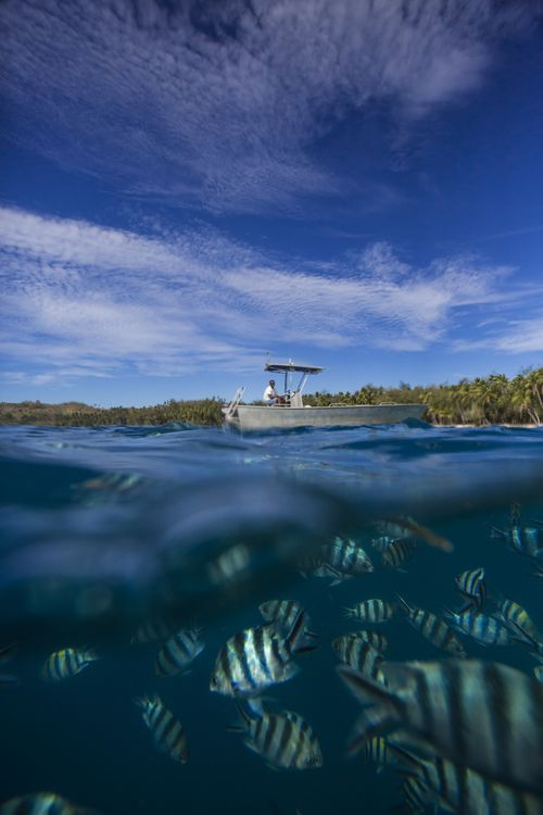 Boat & Fish Photo by Emanuele Del Bufalo -- National Geographic Your Shot
