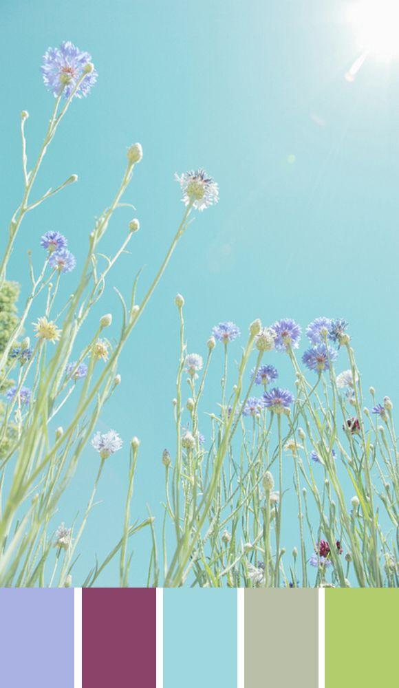 Kleurpalet van de Week: Happy Summer