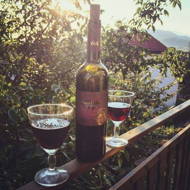 wine balance  #wine #redwine #vargaborinsta #vargabor #vargapinceszet #töpszli #balance #health #hill #nature #sunshine #lovemylife #mik #vscocam #vsco #withmygirlfriend
