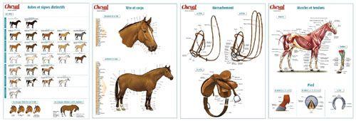 Chevalmag - Hors-série Spécial Galops