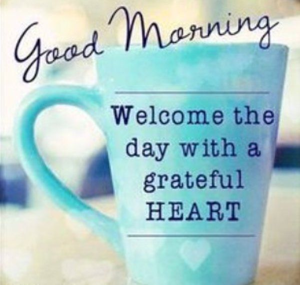 Good morning friends, lets make today a great day! #goodmorning #freshstart…