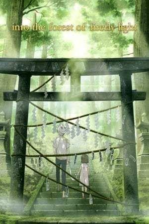 Hotarubi No Mori E Liburan Musim Panas Film Musim Panas