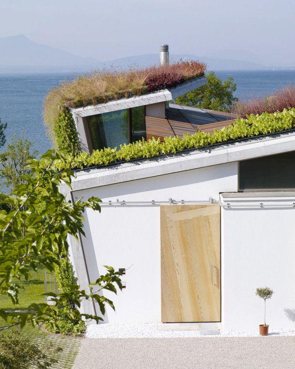 Jewel Box house Design Paradigms