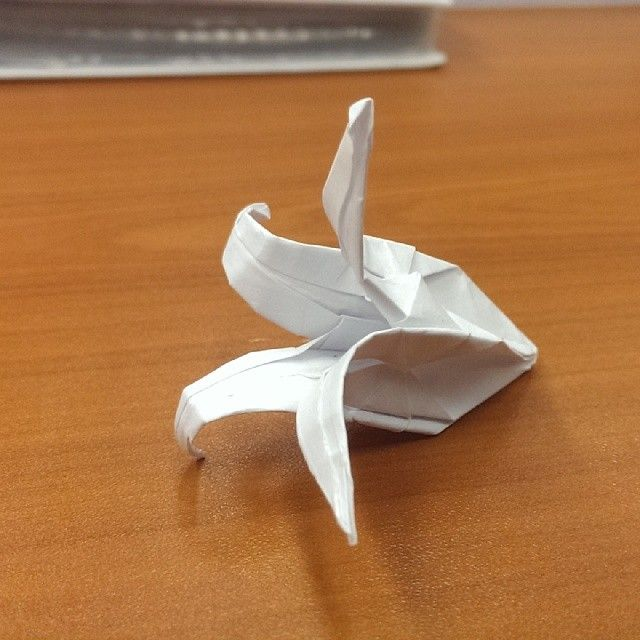 Check out this cool submission on BubblePatch.com in the Create any origami creation challenge. http://www.bubblepatch.com/Submission/116