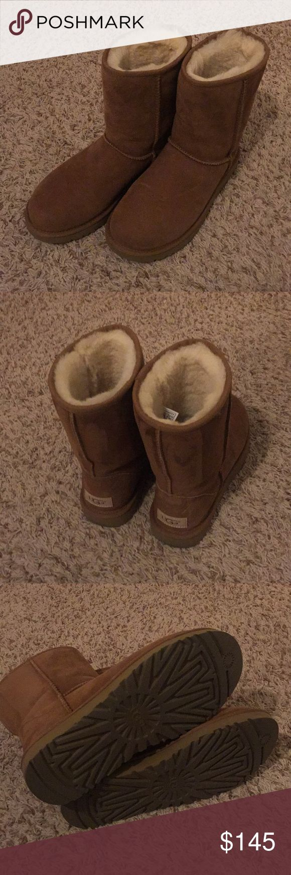 Classic II Short Chestnut Ugg Boot Basically brand new I only wore them 2-3 times! I bought them at an Ugg store so they are guaranteed authentic! They are the classic II, which means they are water resistant. Will fit anywhere from a size 8-9. UGG Shoes Winter & Rain Boots
