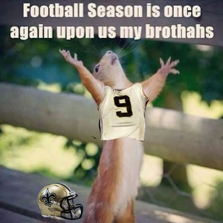Saints Football Season