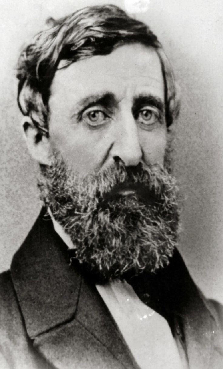 Henry David Thoreau Benjamin D. Maxham - Henry David Thoreau - Restored.jpg Thoreau in 1856 Born	July 12, 1817 Concord, Massachusetts, US Died	May 6, 1862 (aged 44) Concord, Massachusetts, US Alma mater	Harvard College Era	19th century philosophy Region	Western philosophy School	Transcendentalism[1] Main interests Ethics Poetry Religion Politics Biology Philosophy History