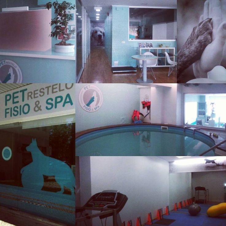 Centro Reabilitação, Fisioterapia e Acupuntura www.fisiospa.pt
