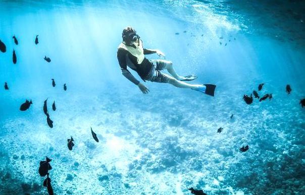 Scuba Diving Indonesia Bali Scuba Diving Indonesia Bali Is Amazing Indonesia Is Of One Country That Is Ri Scuba Diving License Diving License Best Scuba Diving