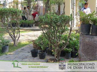 Así Somos: Parquización del Palacio Municipal 9 de Marzo