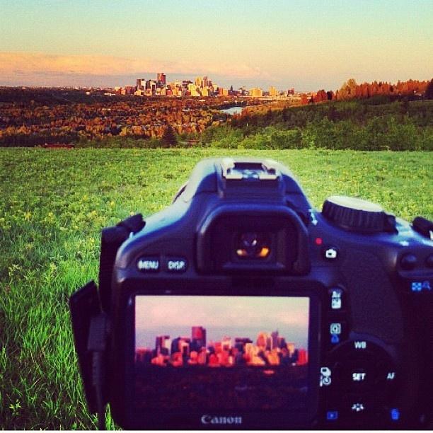 Calgary skyline during summer. Our favourite. Photo courtesy of Neil Zeller #summeryyc