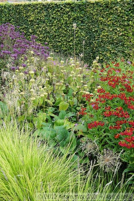 Piet Oudolf, Garden Designer   Going For Something Like This For The Bee  Garden