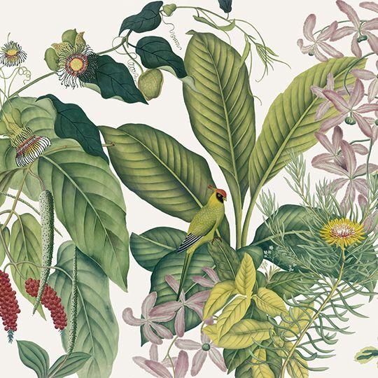 Paysages colorés - Andaman couleur L500xH270 - ultra mat - 5 lés de 100cm