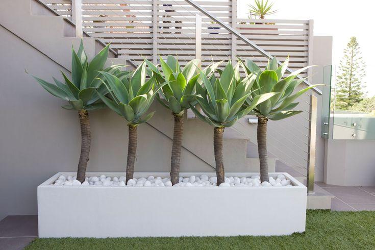 Lovely planter box