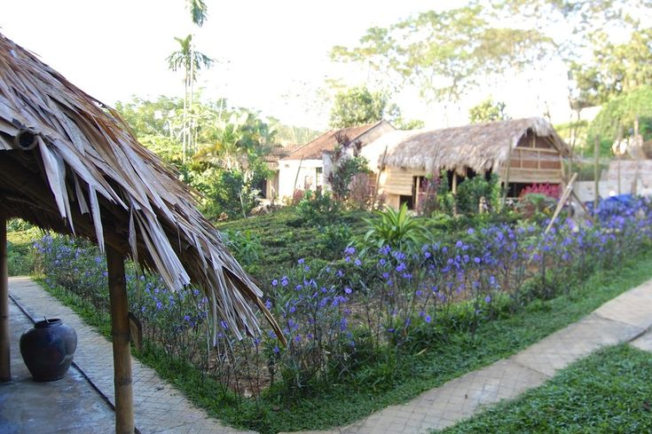 Meet the Friendliest Hosts At Family Homestay in Ba Vi National Park