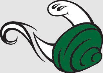 15. Evergreen State Geoducks | Funniest team names: Wild Animal Regional | Deseret News