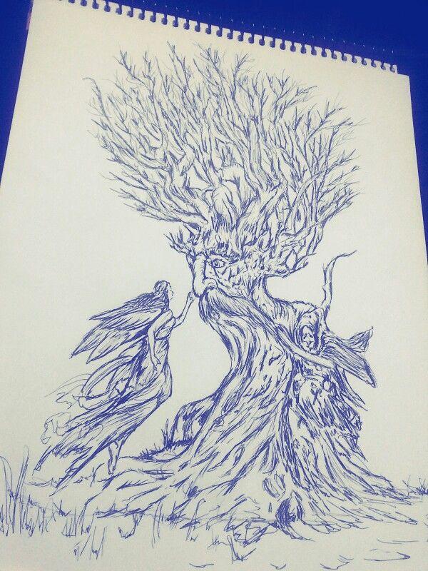 En medio del insomnio.. ¡amutülei aliwen! Amutüi anciano del bosque.. #bosque #árbol #raíz