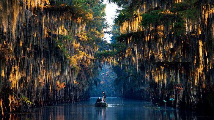 sul lago Caddo, al confine tra il Texas e la Louisiana
