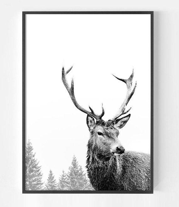 Deer Print Deer Antlers Art Print Scandinavian Print Stag Animal Print Black And White Print Affiche Scandinave Deer Head Stag Head Antler Art Print Antler Art Stag Animal