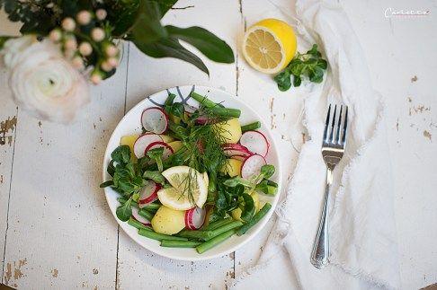 Frühlings Kartoffelsalat, Frühling, Kartoffel, Salat, Frühlingsrezept, Salatrezept, Radieschen, Feldsalat, Vogerlsalat, grüne Bohnen, Dressing, Zitrone, Zitronendressing