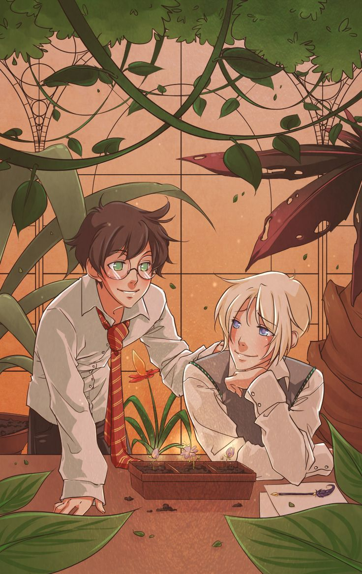 Image result for drarry fanart