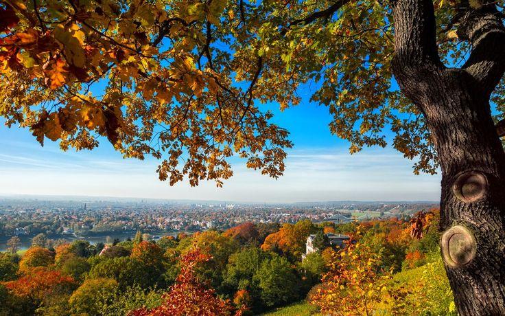 Fall in Dresden, Germany