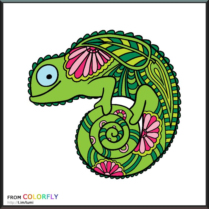 27 Best Colorfy Colorfly Images On Pinterest