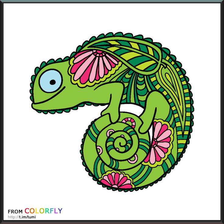 colorfly animal kingdom 1 - Colorfly