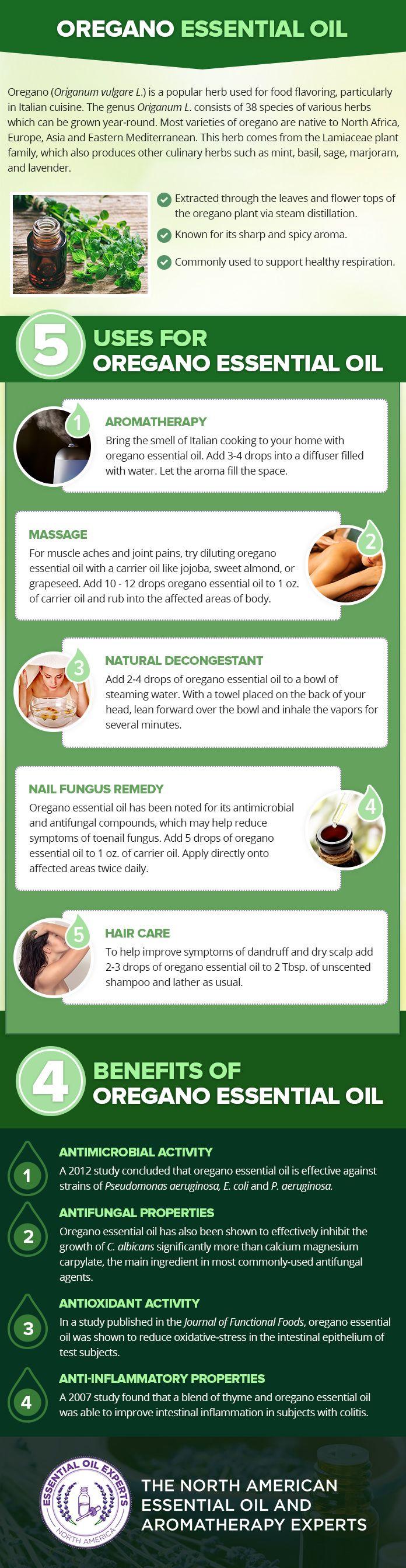 Oregano Essential Oil Uses & Benefits