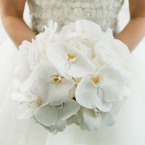 Bouquet di Orchidee Bianche