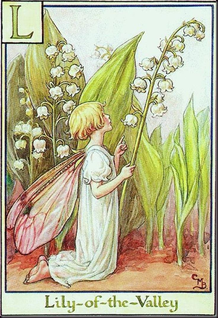 """Lily-of-the-Valley""  художник: Сесиль Мэри Баркер, арт, фея, Ла́ндыш (лат. Convallária), серия: Alphabet Fairies"