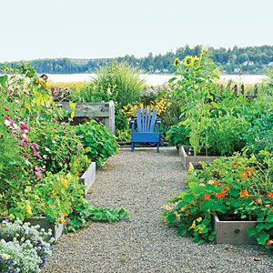 Northwest vegetable garden