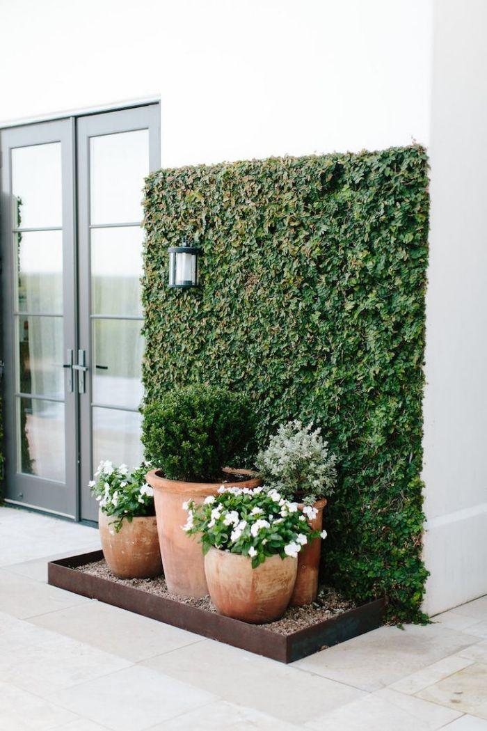 ▷ 1001 + idées d'aménagement d'un jardin, balcon ou terrasse avec un mur végétal extérieur