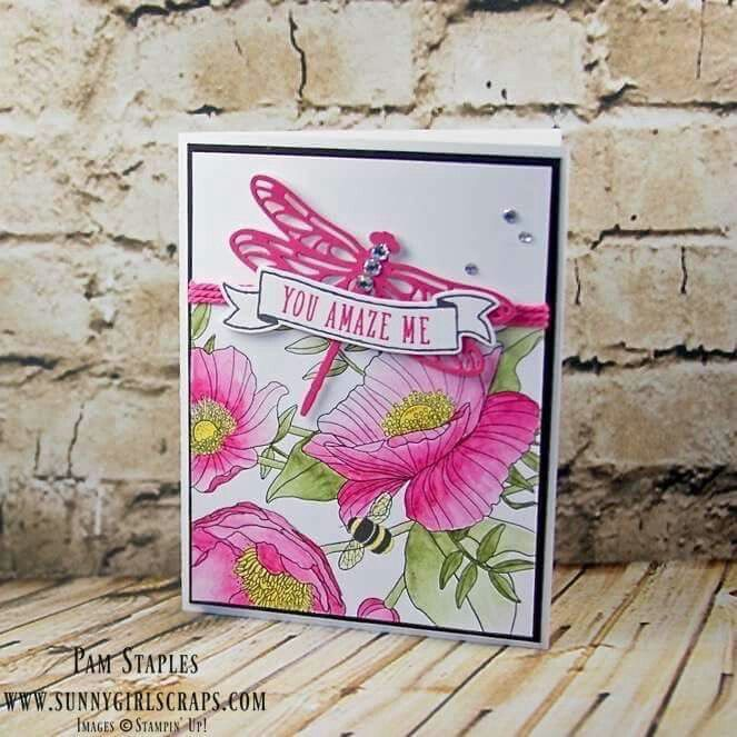 Inside the Lines Card with Dragonfly Dreams Sunny Girl Scraps with Pam Staples Stampin' Up!