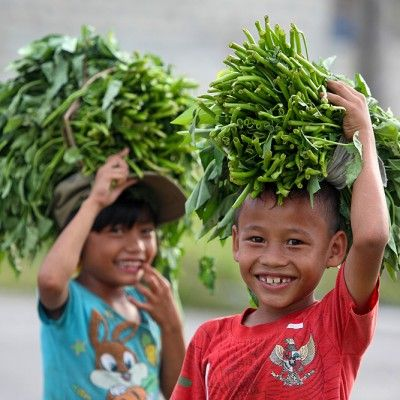Smiling children with bundles of Kangkung (water spinach). This is a vegetable that is growing wild along creeks and rivers.