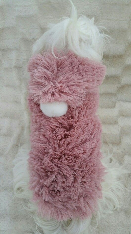 Snow baby pink for sale in www.pixiesposhpets.co.uk