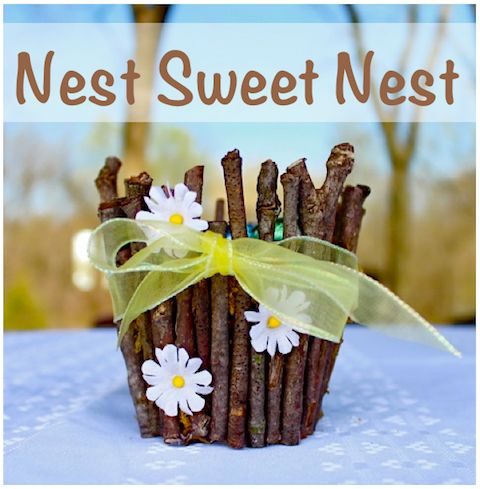 Twig 'nest' party bowls!  A great theme for baby showers, new homes, spring, etc. Tutorial at I Gotta Create!