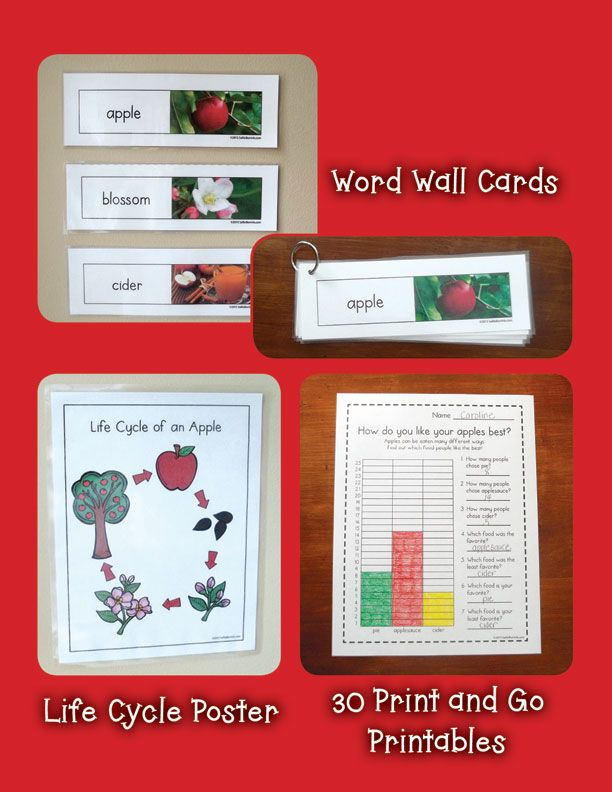 Apples Unit with Craftivity 2