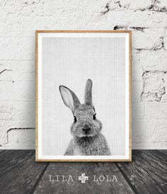 Konijn Print Woodlands kwekerij konijn Art Decor door lilandlola