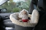 The Small Dog Car Seat for Dogs that Ride in Style