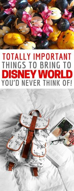 This list of things to bring to Disney World parks is brilliant! Thanks for sharing!
