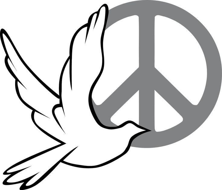 470 Best Doves F Peace Images On Pinterest Peace